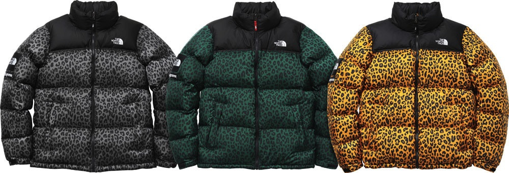 Supreme New York North Face Nuptse Down Jacket
